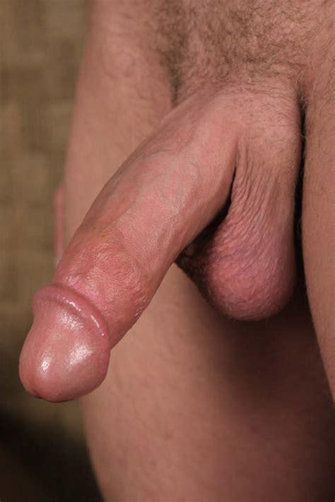 gay hard dicks jpg 533x800